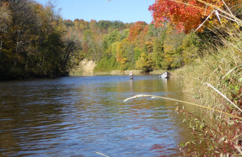 Fall steelhead fishing on the Saugeen River.