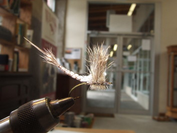 Rob's Extended body Drake is a combination of  a classic extended body and a compara dun but he used the two for a specific reason, that being that the size of the fly required the assistance of the hackle to float properly.